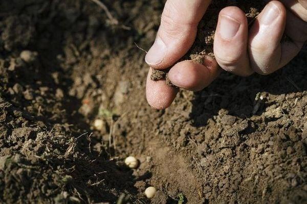 「農薬じゃない」毒物を平気でまき散らす無農薬信者