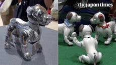 Aibo fan meeting at Ginza Sony Park