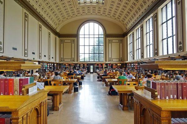 なぜ大学はそこまで「キャリア支援」に入れ込むのか?
