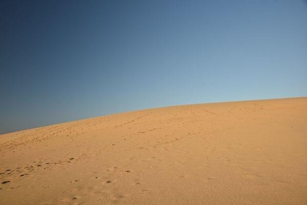 「出口どこ!?」ウイグルの砂漠で死ぬかと思った話