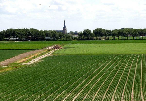 大前研一の特別講義「温室よりもPC操作。オランダ農業がスマートアグリである理由」