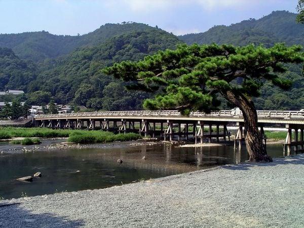 ここに来て伊勢丹ですか!中国人家族が京都で紛糾