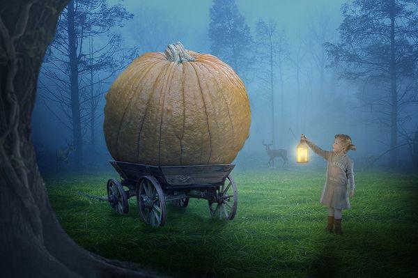 「かぼちゃの馬車」問題に学ぶ、失敗しない投資物件の選び方