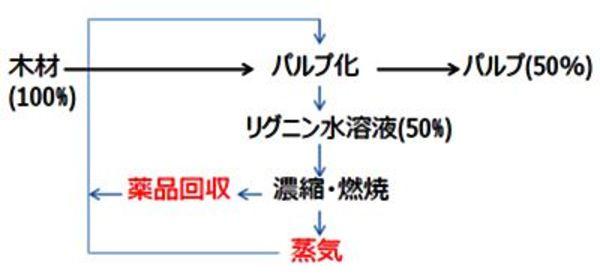 世界有数の森林資源を利用していない日本