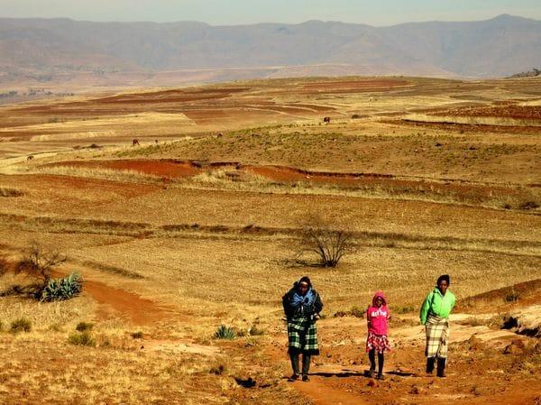 ズルズルとアフリカの旅を続けたのはマンデラのせい