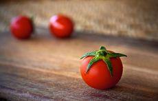 なぜトマト? 話題のバイオサスペンス誕生秘話