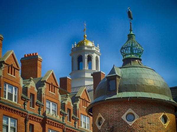 米国の大学が国民の信頼を失いつつある理由