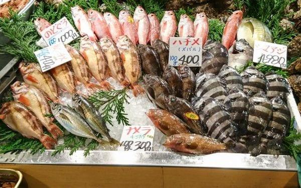 密漁・密流通で支えられる日本のサカナ