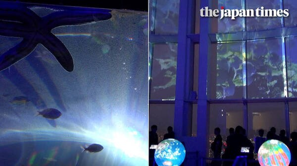 'Tangible Earth Museum 2018' at Roppongi Hills