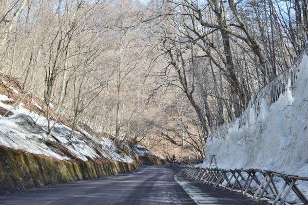 軽井沢スキーバス事故、現場で何が起きたのか