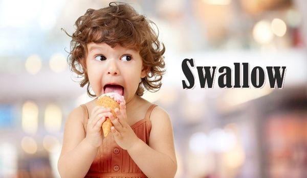 #079: swallowの用法/pokeって何?(ボキャビル・カレッジ・第79回)