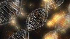 遺伝子改変技術など最も勢いのある生物学の最前線