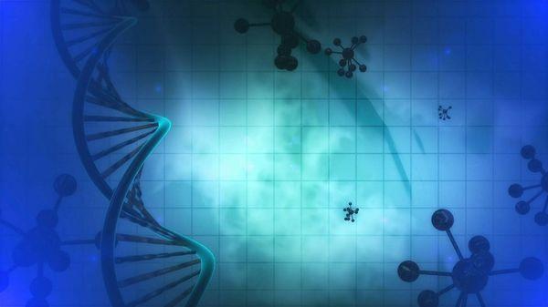 医療の研究を阻む壁? 生命システムの「複雑さ」