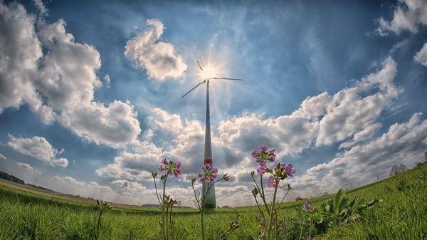 廃棄物、水力、太陽光~全国で設立相次ぐ地域新電力