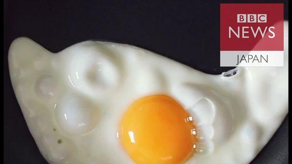 英国でも生卵が全面解禁 赤ちゃんも妊婦も食べてOK