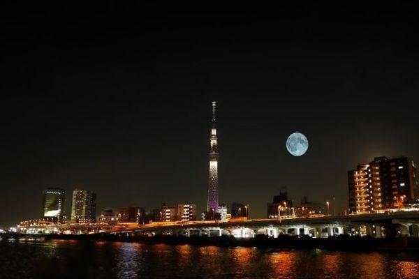 美しい国、日本の裏側~「日本会議」の正体