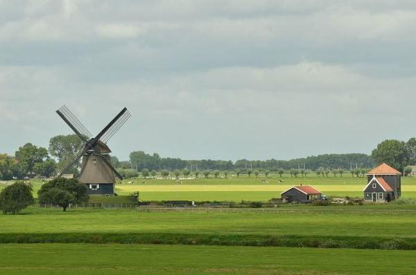 大前研一の特別講義「オランダが実践する『選択と集中』の農業」