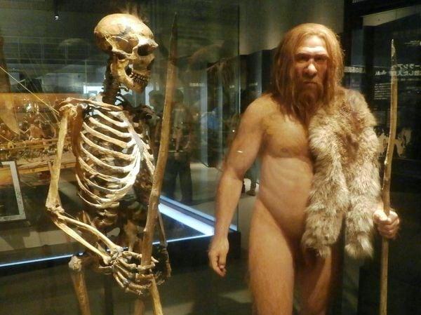 6万年前に人類が手に入れた脅異の能力とは?