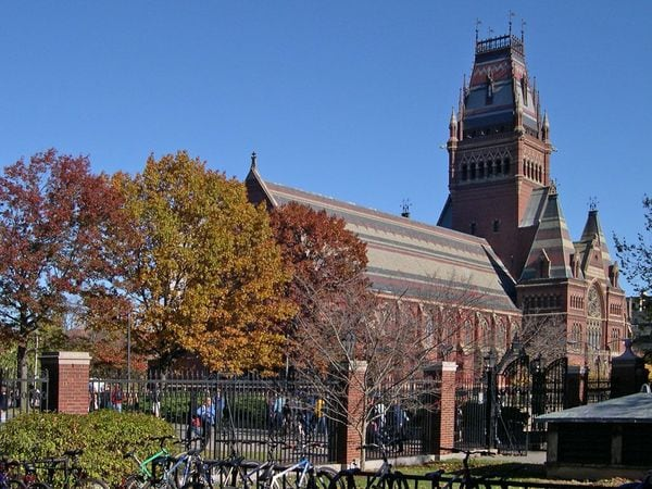 ハーバード大留学中に100回以上言われたセリフ