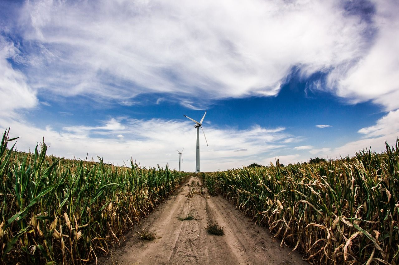 環境性とストーリー、電気選びで問われる時代に
