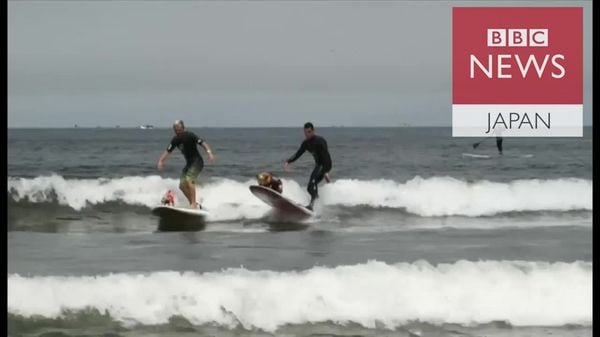 犬のサーフィン世界大会 米カリフォルニア州で