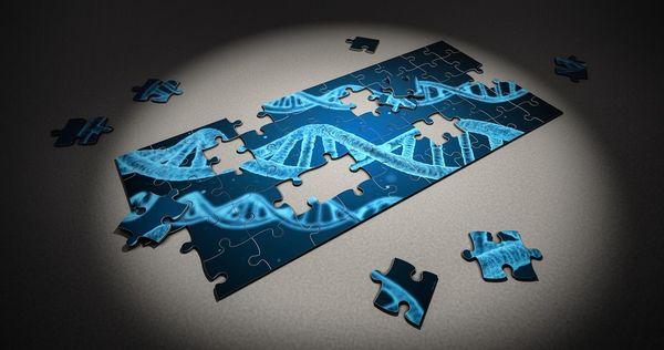 今こそ知っておきたい「ゲノム編集」の大きな可能性